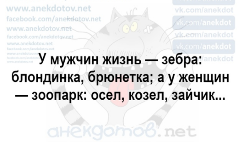 https://prolife.ru.com/wp-content/uploads/2019/04/d18.png