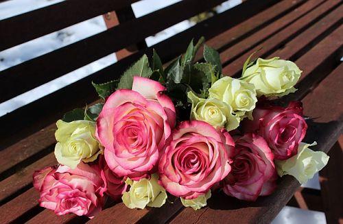 Как укоренить розу, тогда вы сможете любоваться ее ростом и цветением в горшке или на клумбе.
