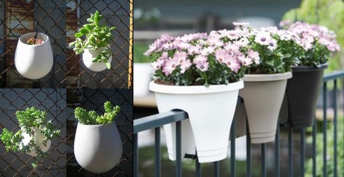 Сад на балконе – это проще, чем вы думаете!
