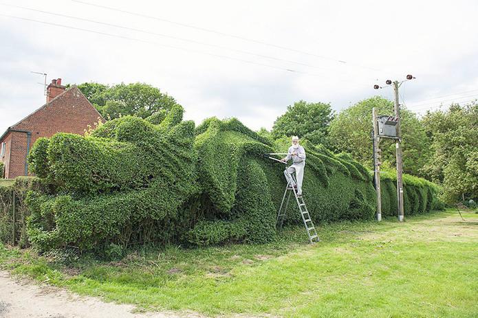 На выращивание этого дракона в качестве забора у креативного фермера ушло 13 лет в мире, скульптура