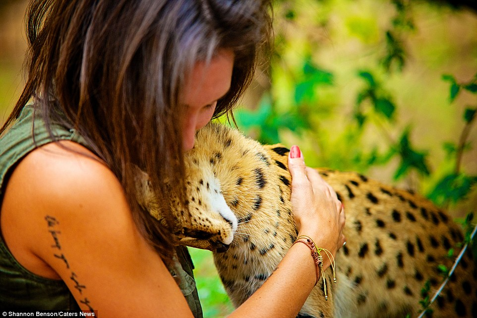 Brave girl-the photographer easily finds common language with wild animals 07