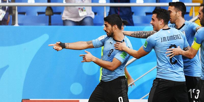 Выдра-оракул предсказала победу уругвайцев в матче с Россией