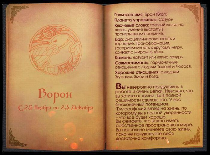 Узнайте, какое вы животное по кельтскому гороскопу гороскоп, животные, кельты