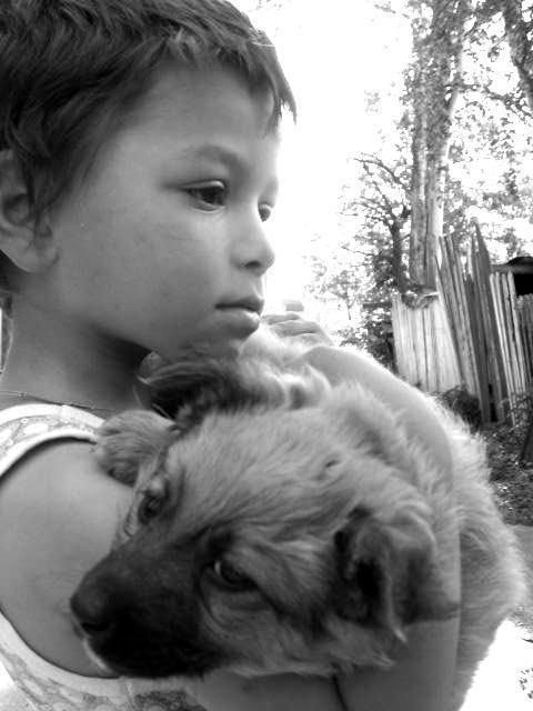 За избиение маленького зоозащитника жителю Карелии грозит до 2-х лет