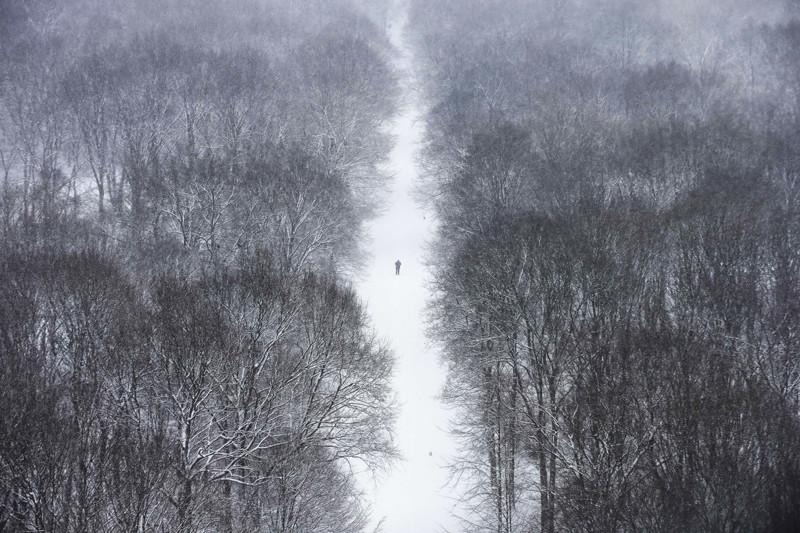 22. Одинокий человек в парке Тиргартен после сильного снегопада, Берлин. наш мир, удивительные фотографии