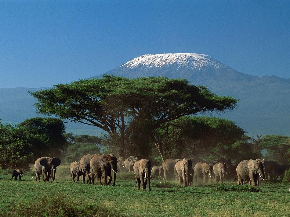 Исчезающий ледник на вершине Килиманджаро