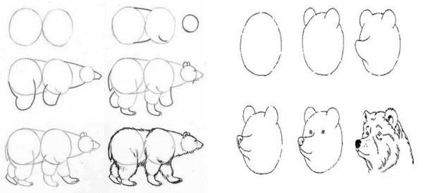Простой рисунок животного поэтапно