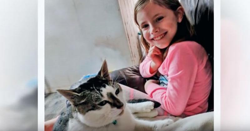 Попав в семью, приютский кот стал вести себя странным образом