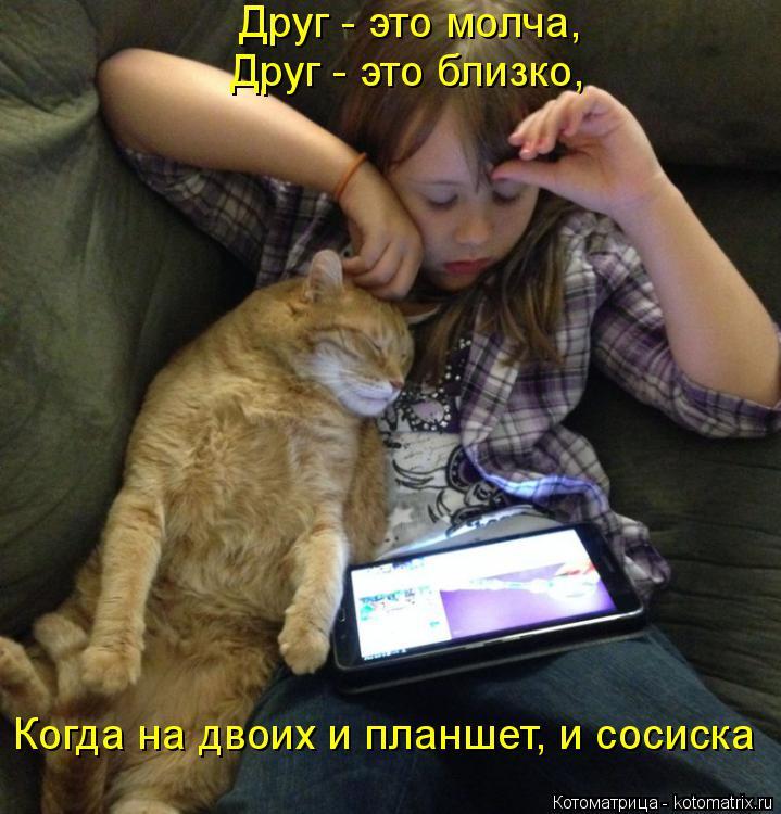 Котоматрица: Друг - это молча, Друг - это близко, Когда на двоих и планшет, и сосиска