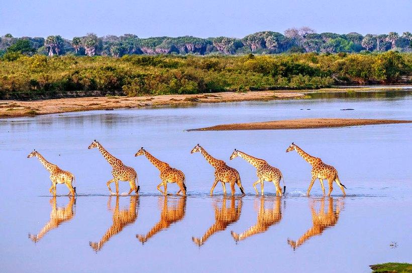 10 самых интересных мест Африки