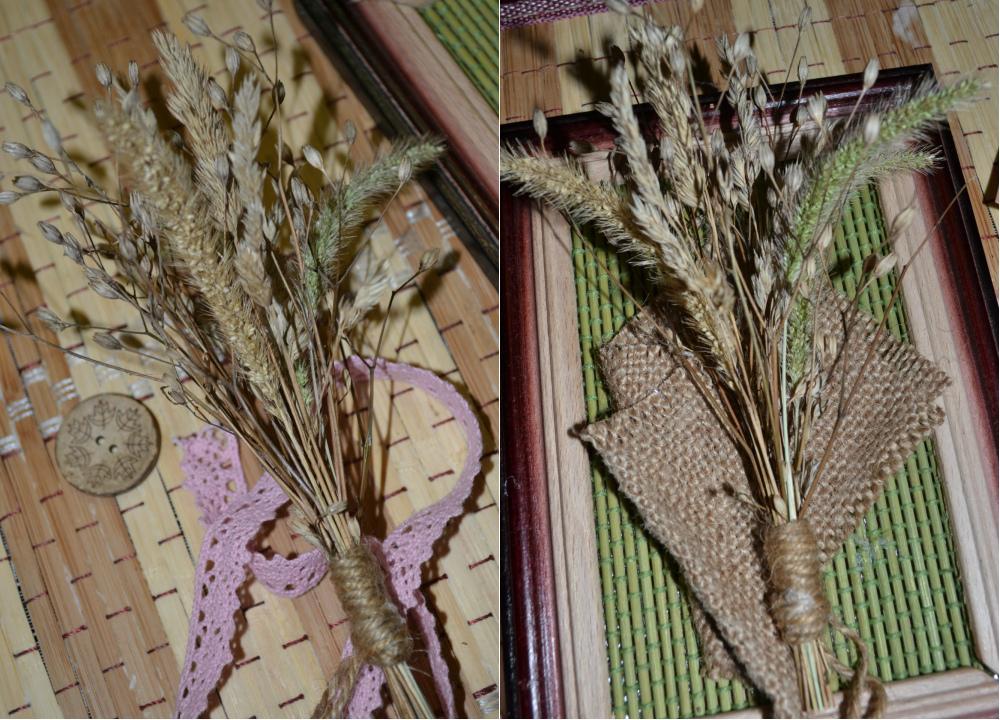 Колоски травы