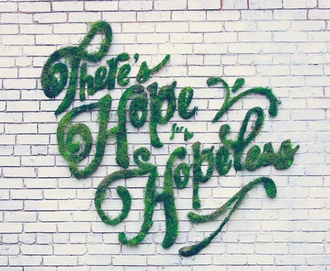 Он смешал мох с йогуртом, а в итоге получил настоящее живое граффити!
