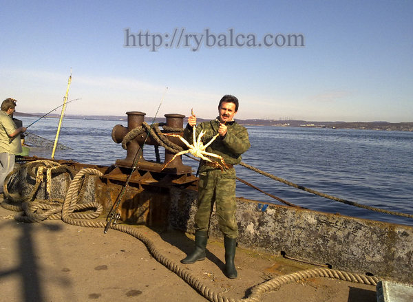 ловля на финском заливе с берега