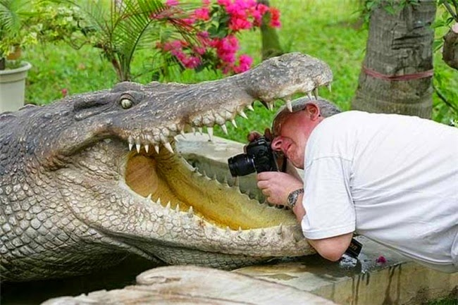 18 фотографов, готовых на все ради хорошего кадра