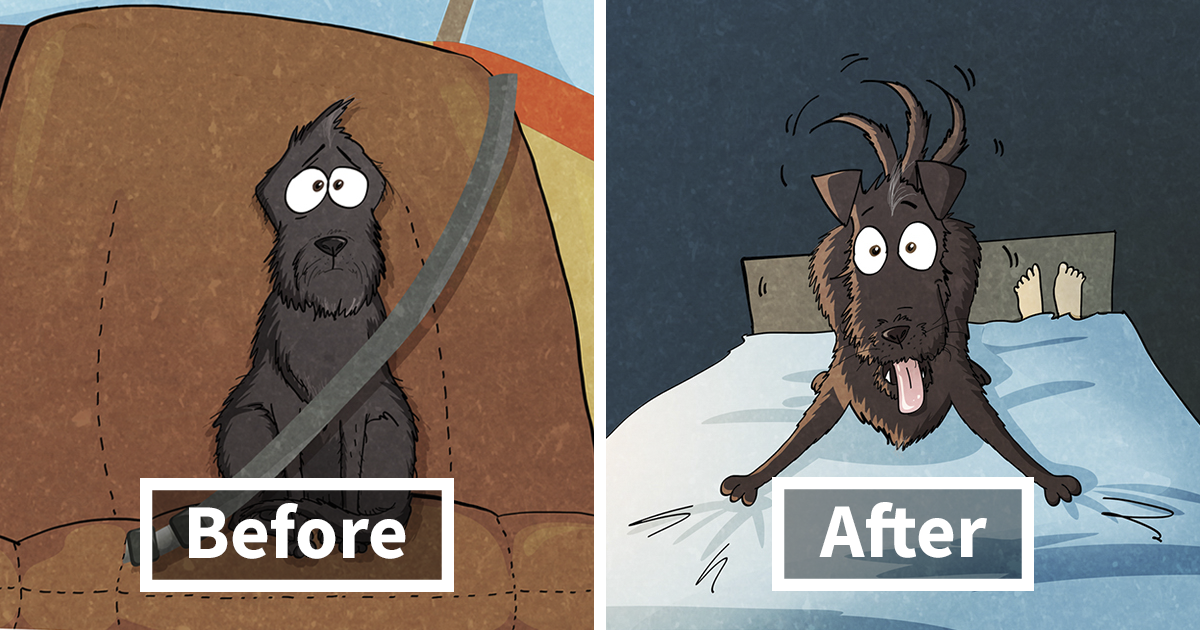 10+ Things That We Learned After Spontaneously Adopting A Dog From A Shelter