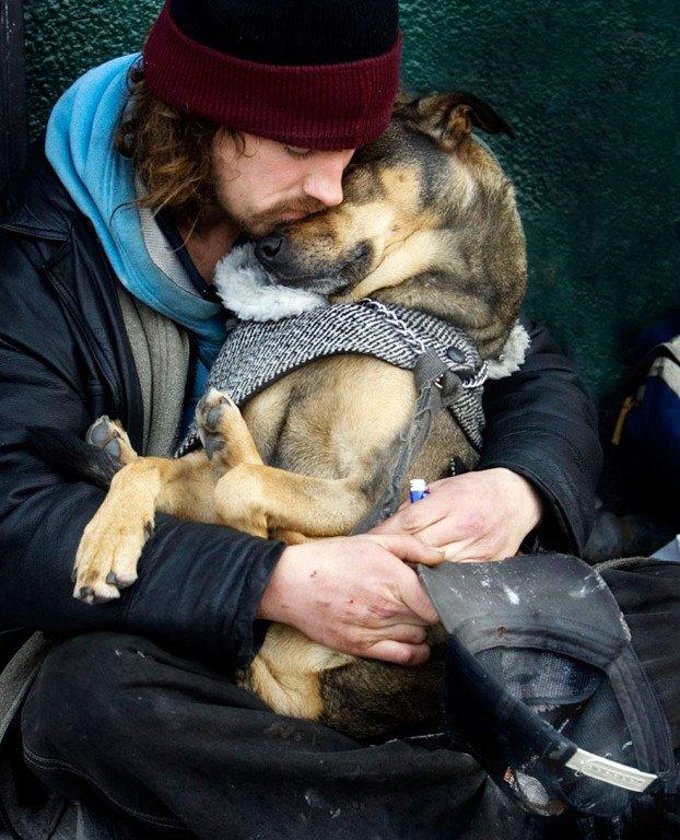 14 фотографий, которые доказывают, что собак не волнует богатство их хозяина