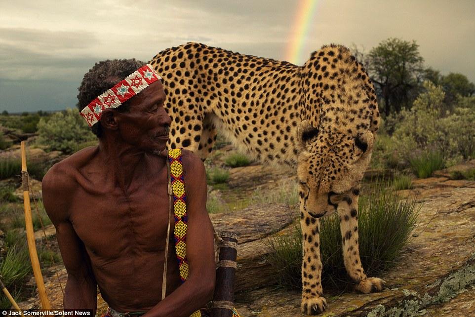 Охотники из древнего племени не боятся диких гепардов