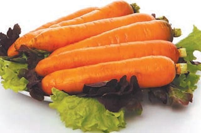 Что делать, если морковь не всходит?