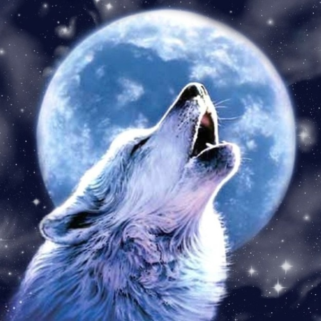 Волчье счастье