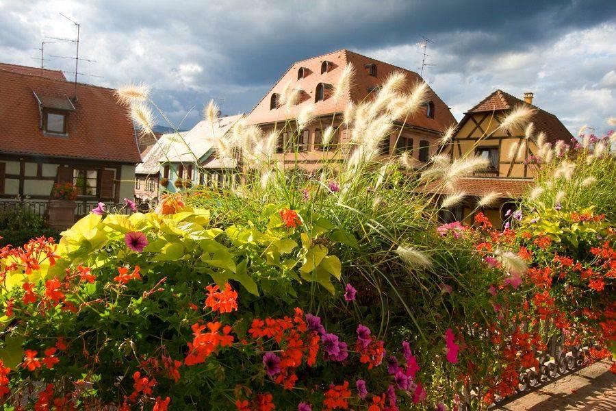 Живописный Бергхайм, Эльзас, Франция - фотопутешествие