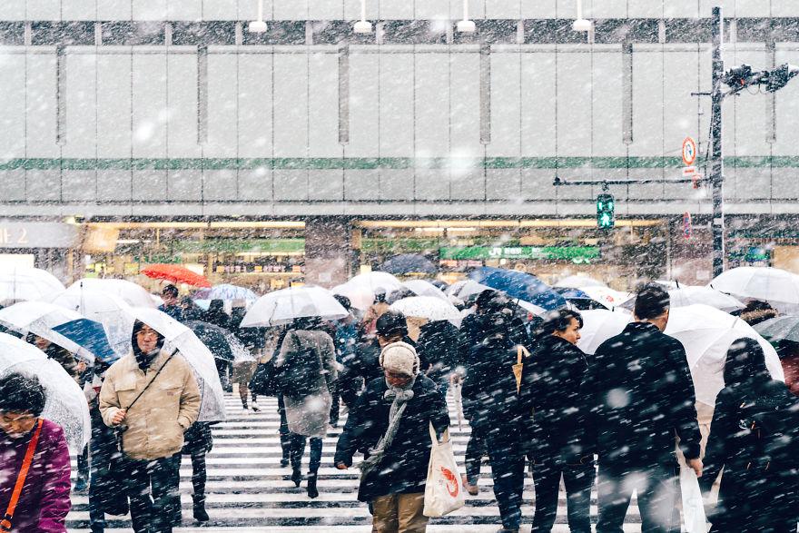 Snowy Shinjuku, Tokyo