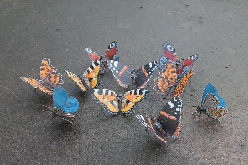 Скульптуры из металлолома, вдохновленные природой