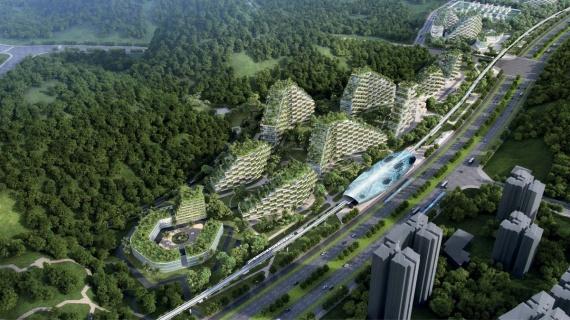В Китае планируется строительство новейшего «города-леса»