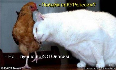 http://mtdata.ru/u23/photo9568/20674013386-0/original.jpg