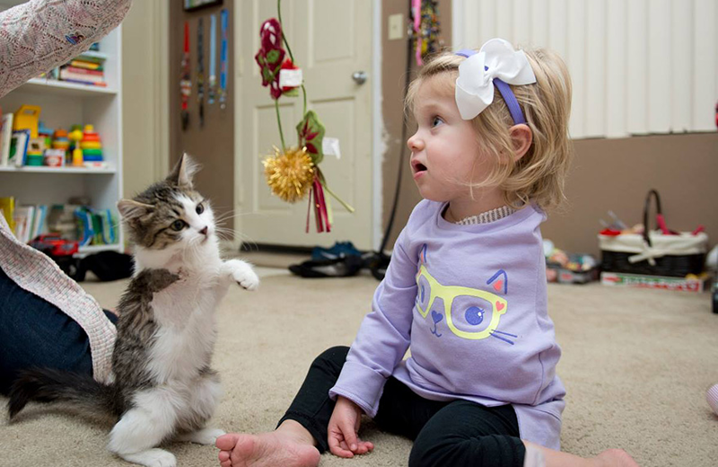 До слез: Девочка без руки и трехлапый котенок нашли друг друга