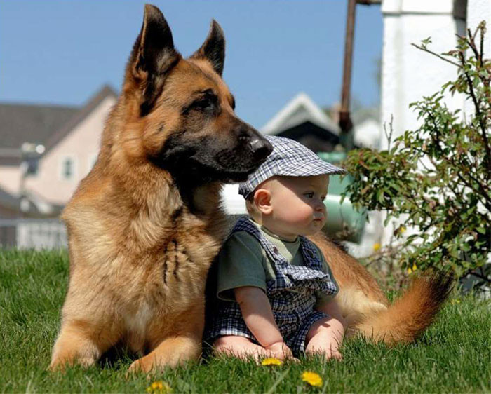 Не волнуйся, я всегда буду твоей защитой  дружба, ребенок, собака