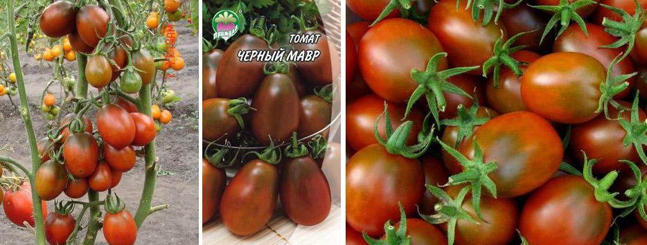 Вопрос к любителям томатов