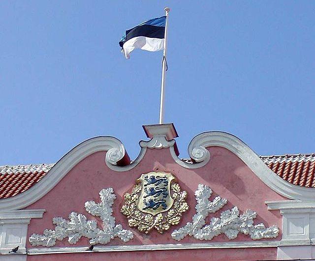 Эстонцы протестуют против беженцев из стран третьего мира