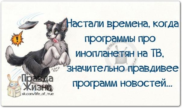 Веселые открытки для хорошего настроения