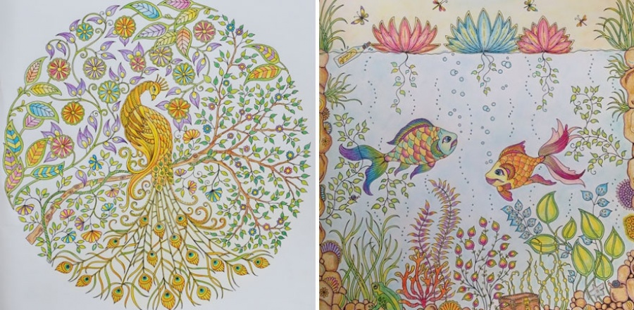 Удивительная раскраска для взрослых завоевала популярность во всем мире