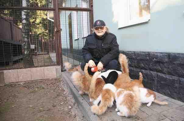 В его загородном доме живут 40 кошек, 20 собак, 4 гуся!