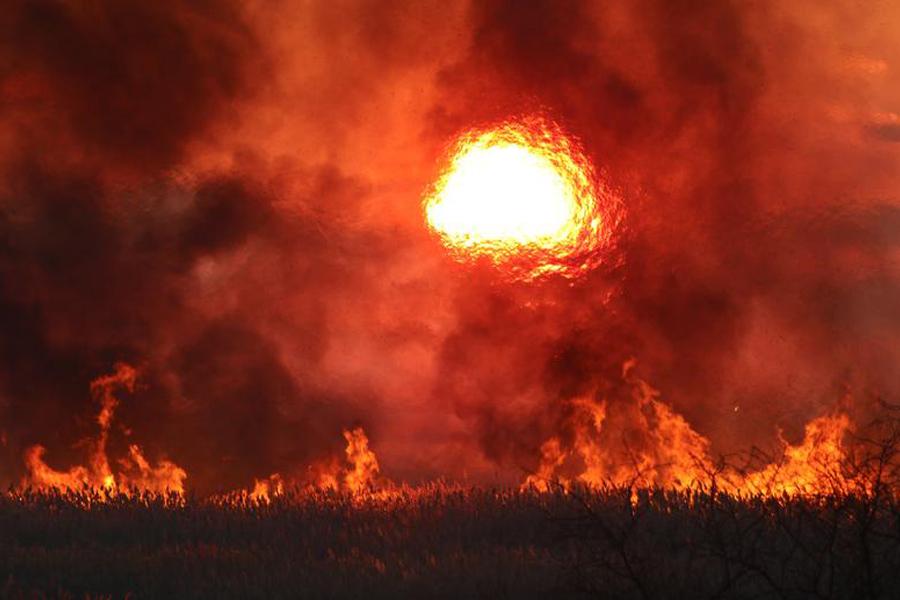 О горящей земле под ногами в Крыму