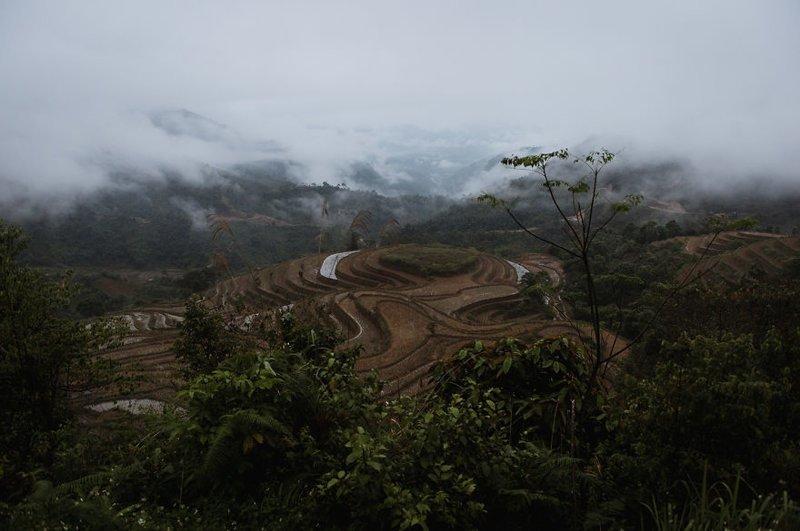 Рисовые поля Вьетнам, азия, красиво, красивый вид, природа, путешествия, фото, фотограф