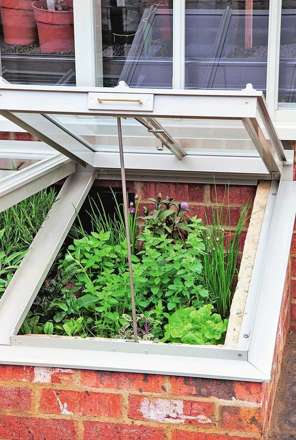 Если парник соорудить с южной стороны дома вплотную к стене, он послужит отличным местом для зимовки холодостойких пряных трав