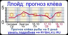 прогноз клева в борисове минской области