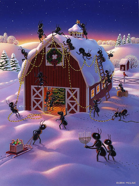 christmas-decorator-ants-robin-moline