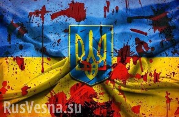 Наука оставаться человеком: куда идёт Украина