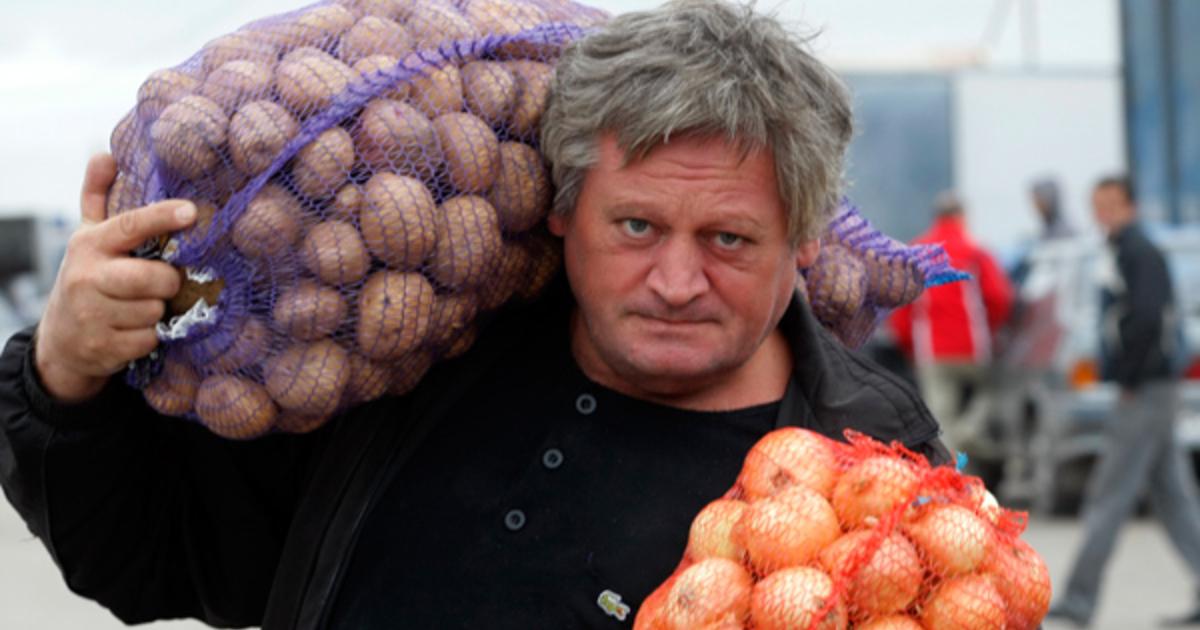 Налог на картошку: Автора! Кто инициатор?
