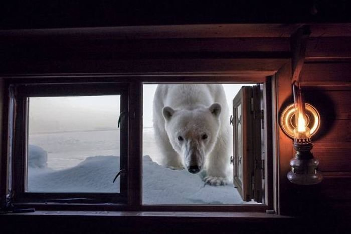 Красивые фото, которые не нуждаются в комментариях