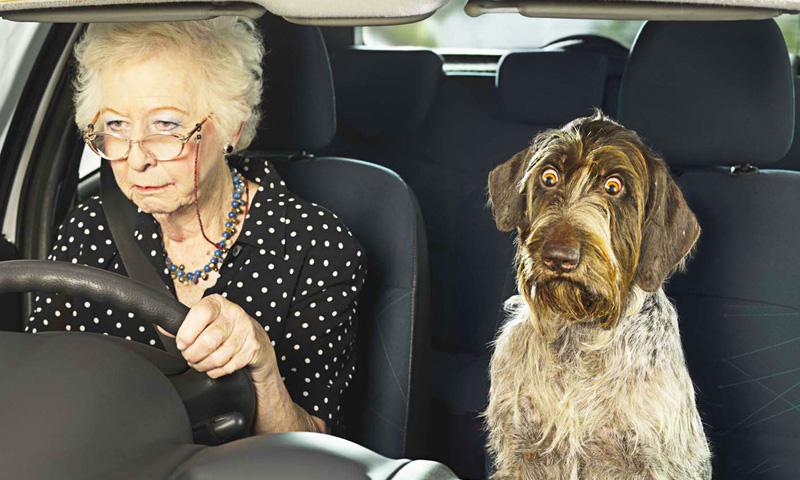 Женщина с большой буквы — пожилой даме удалось шокировать полицейского на раз