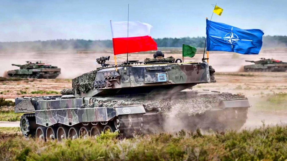 Польша готовится получить по лбу, наступив на «русские грабли»