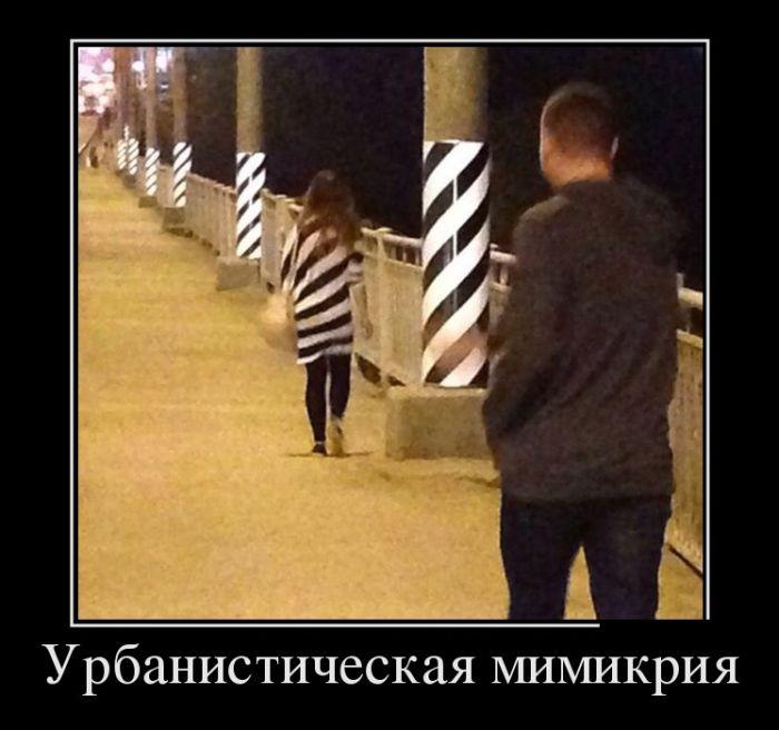 Демотиваторы №1099 (30 фото)