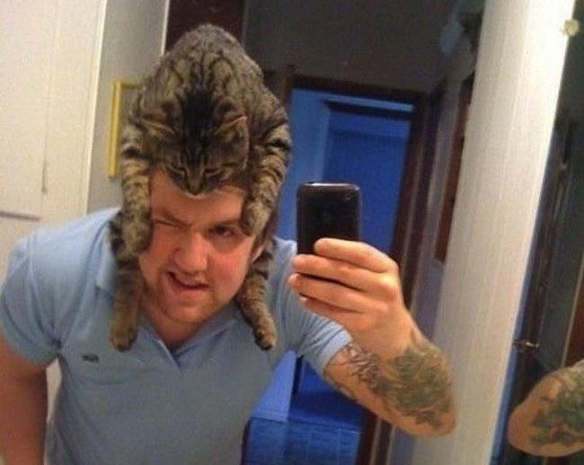 Самая модная шапка – это шапка из кошки