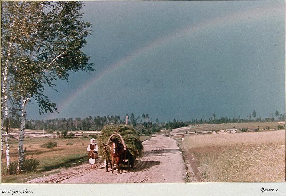 «Воробьева гора» («Worobjewa Gora»). Калужская область. деревня, фото