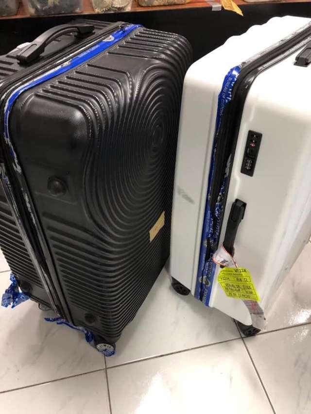 Пассажир бросил в аэропорту 4 чемодана! А внутри были спрятаны 1500 маленьких жизней…