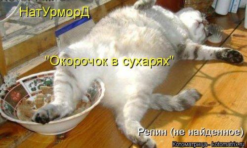 http://mtdata.ru/u23/photoAC24/20254708000-0/original.jpg